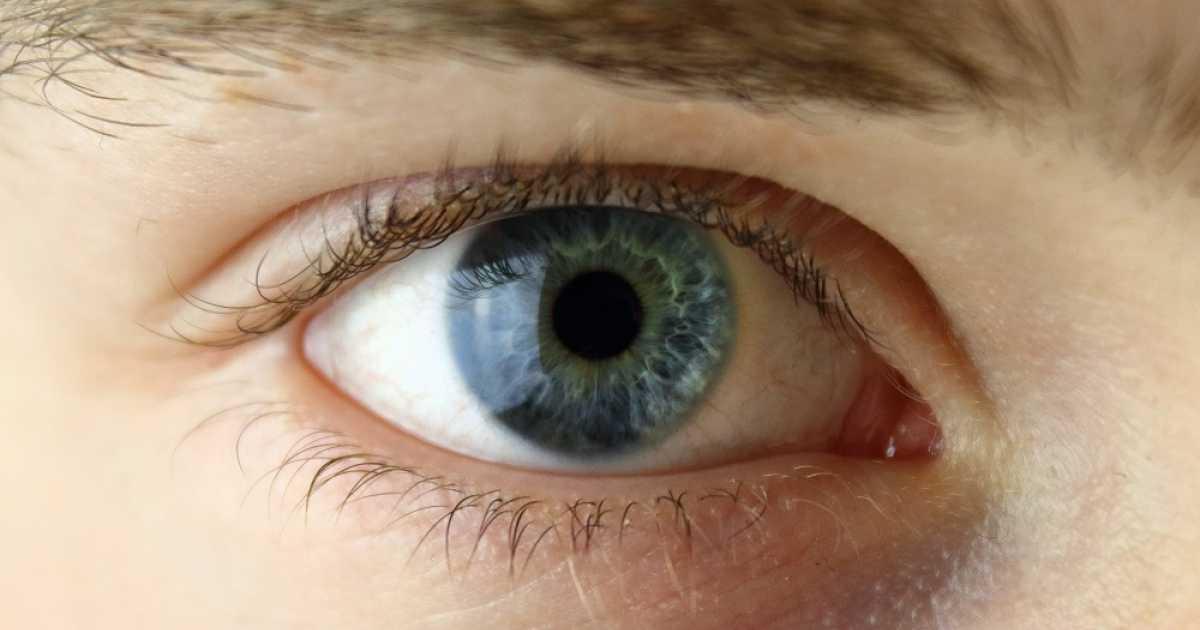Plaquenil et examen ophtalmologique